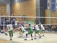 Panvita Pomgrad vs. ACH Volley